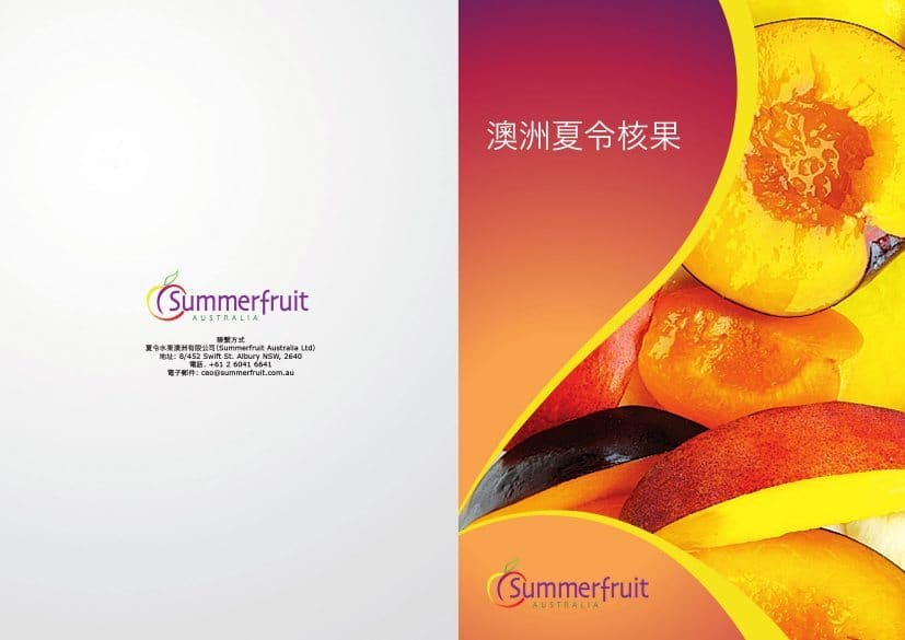 Export Brochure Chinese