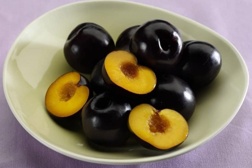 plums-summerfruit-australia