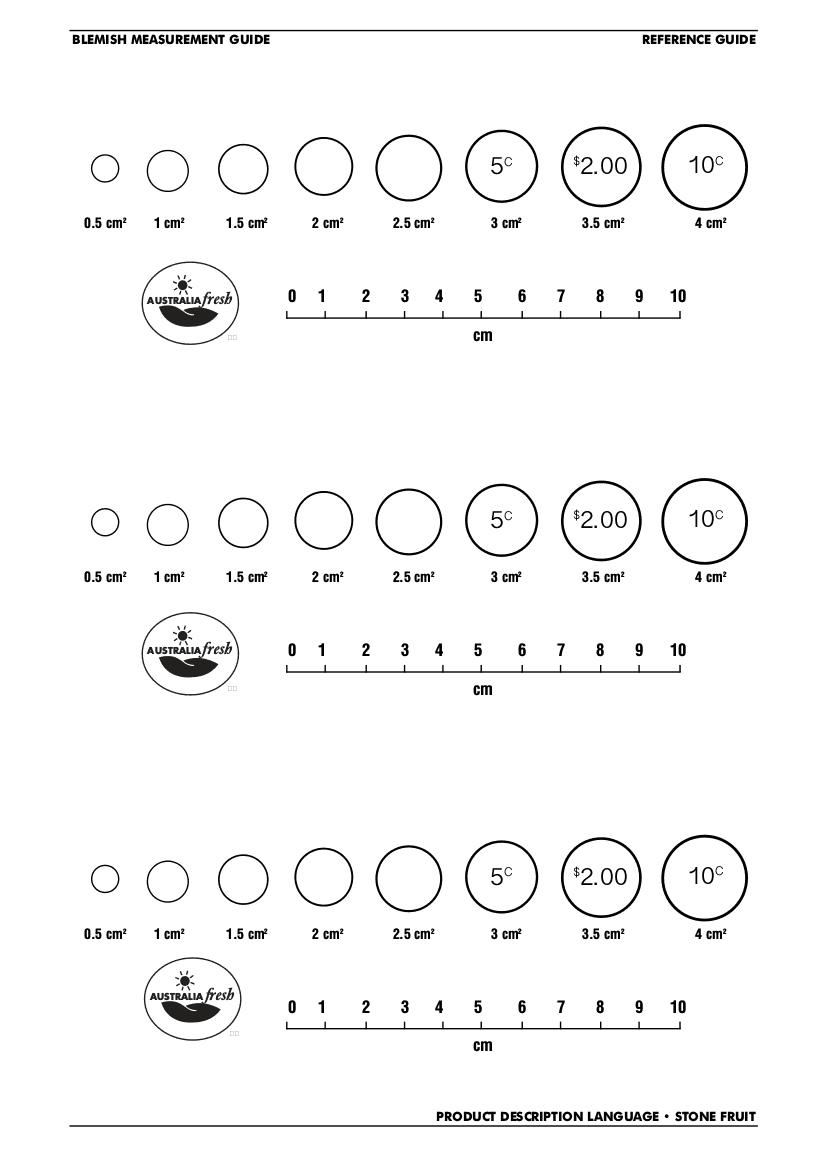 Product Description Language