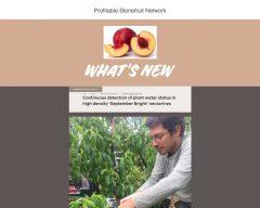 Profitable Stonefruit Network June 2018