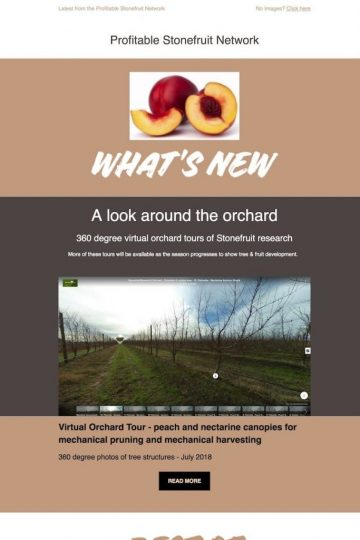 Virtual Orchard Tour