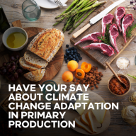 Have your say about climate change adaptation in primary production
